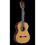 Alhambra 10 P + Estuche [Guitarra Clásica]