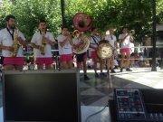 Concurso de Charangas 2015