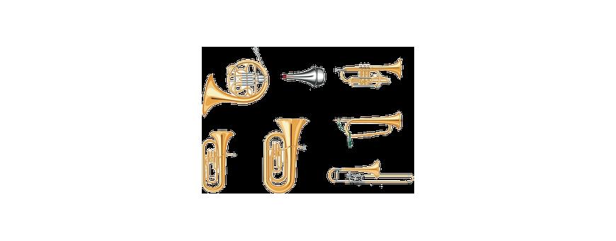 Comprar Instrumentos de Viento Metal - multiocio.com