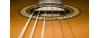 Comprar Instrumentos de Cuerda y accesorios