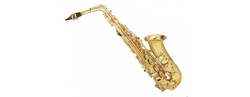 Comprar Saxofones Yamaha, J. Michael, Jupite, Selmer, Buffet...